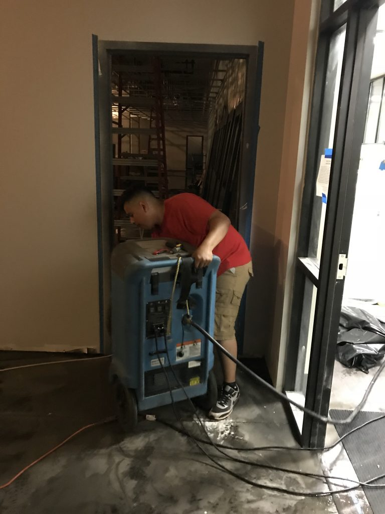 Little Rock AR mold removal