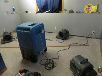 Bettendorf IA mold removal